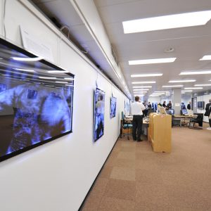 3D photo exhibition during the Launch of the International Perspectives on Spinal Cord Injury on the International Day of People with disability, WHO Headquarters, Geneva. Tuesday 3 December. Photo by Violaine Martin